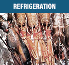 Request a quote for restaurant refrigeration